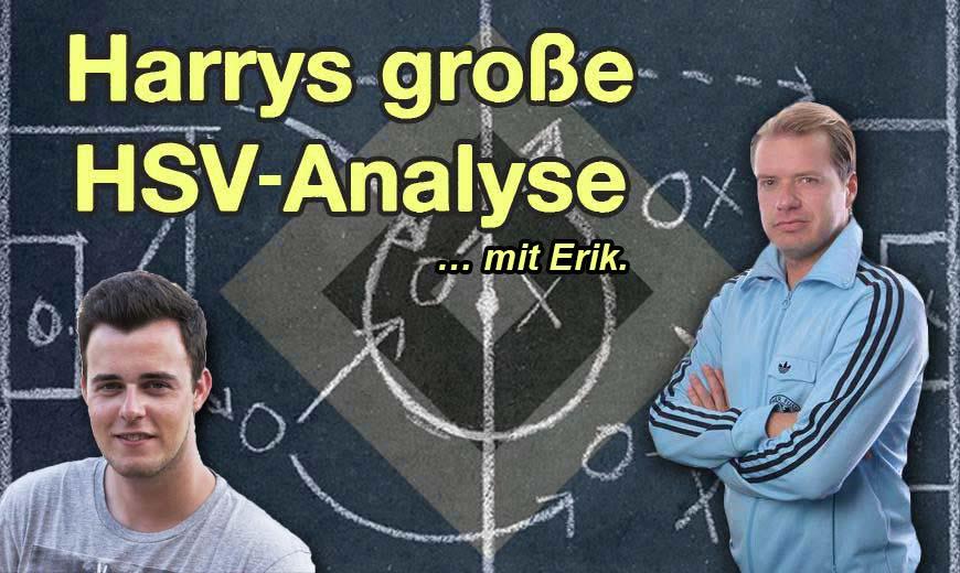 harrys_analyse_erik_870