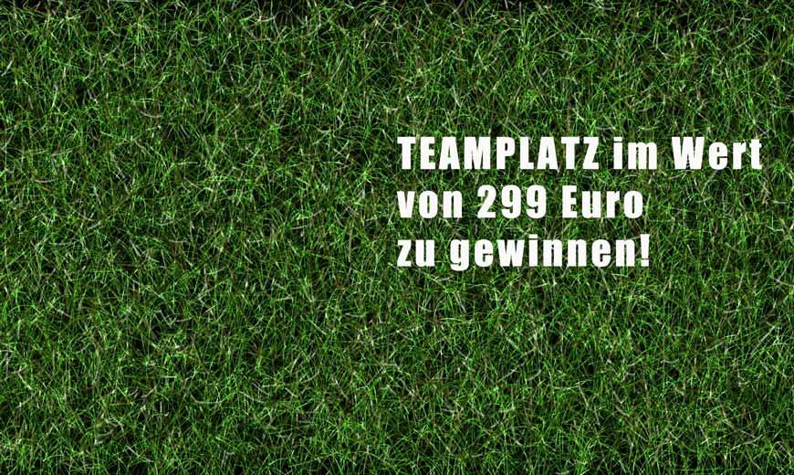 grass-931796_1920